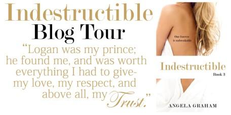 Indestructible blog tour banner