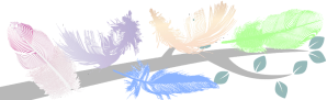 FiveFeathers