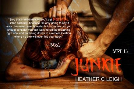 JunkieAd4 (1)