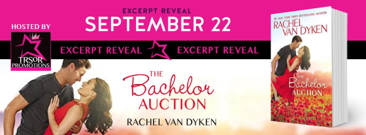 the-bachelor-auction-excerpt-banner